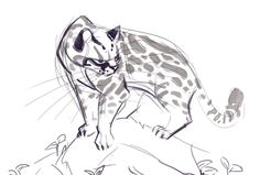 219: Ocelot Sketch Cat Reference, Animation Reference, Animal Sketches, Animal Drawings, Pencil Drawings, Animal Illustrations, Concept Art Gallery, Jellicle Cats, Warrior Cats Series