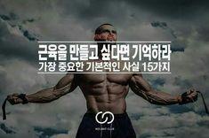 근육 만들때 가장 중요한 15가지 상식 - bang543 | Vingle | 다이어트, 필라테스, 스포츠, 피트니스, 건강정보, 부모, 음식