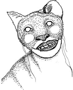 cathead1 | ruth allen