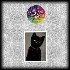 Disco Kitty, created by sarah-siegel Folk Art, Kitty, Digital, Create, Kitten, Cats, Cat