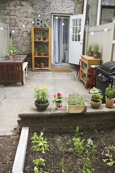 i want to host a party in this brooklyn backyard what a fantastic