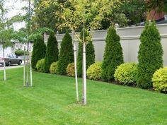 thelawnking.com - Your local toronto and etobicoke lawncare and garden care company. The Lawn King! residential lawn and garden maintenence free estimates. The Lawn King is servicing toronto east mississauga woodbridge. Torontos most reliable lawn and #modernyardflowerbeds