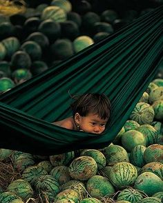 Existencias frutales. Cambodia. #khmer #travel #suenodocfilms
