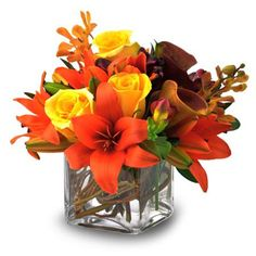 Google Image Result for http://www.vogueflowers.com/images/items/AutumnGlory330.jpg
