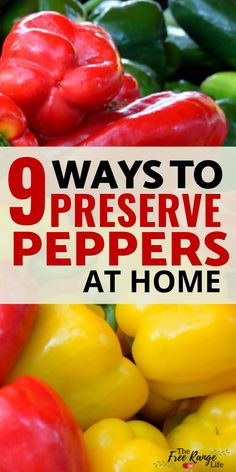 Preserving Peppers: 9 Ways to Preserve Peppers At Home Pickled Pepper Recipe, Roasted Tomato Sauce, Tomato Sauce Recipe, How To Store Peppers, How To Freeze Peppers, Canning Hot Peppers, Hot Pepper Relish, Pepper Jelly, Harvest Grill