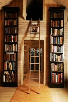 I really want shelves that I need a ladder for. And a secret little place to read? perfection.