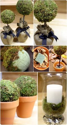 TOPIARIES :: Moss Topiaries & Decorations Tutorial :: For the topiaries & moss balls in the vases, use green embossing thread to wrap the moss around the styrofoam ball (as opposed to gluing it). I like this technique because you can reuse the moss if you decide to change your decor.