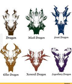 Skyrim dragons