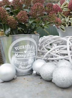 Make your X-mas garden! Copyright © by Van Son & Koot BV. All Rights Reserved.