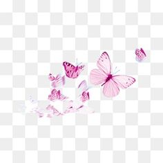 Butterfly Clip Art, Butterfly Watercolor, Butterfly Wallpaper, Photoshop Design, Photoshop Elements, Flower Png Images, Overlays Tumblr, Music Tattoo Designs, Watercolor Logo