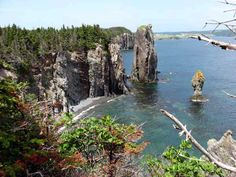 Skerwink Trail, Newfoundland   dunfield home trinity skerwink trail twillingate newfoundland july ...