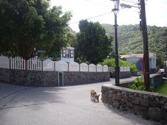On Saba, all the houses look the same. Pretty white cottages with red roofs