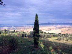Bedrijfsfotografie - fotoshoot voor vernieuwde website & andere toepassingen van een agriturismo in Toscane, nabij Volterra.