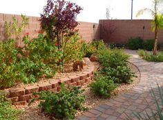 Visit Our Gallery of Las Vegas Landcape Designs, Backyard Landscaping Projects, Lawn Conversion in Las Vegas