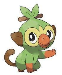 New Pokemon, Pokemon Room, Starter Evolutions, Monkey Species, Pokemon Website, Grass Type Pokemon, Otaku, Mudkip, Dream Team