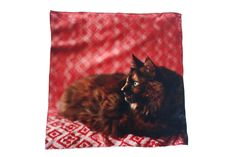 What can we say...cats are in right now! www.mooreaseal.com