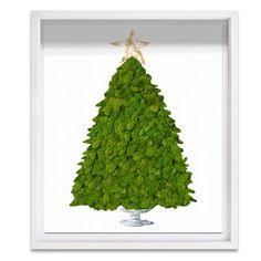 Latitude Run 'Live Moss Christmas Tree' Framed Graphic Art Print Moss Wall Art, Moss Art, Christmas And New Year, Christmas Tree, Christmas 2019, Easy Crafts For Kids, Art Of Living, Hand Painting Art, Planting Flowers