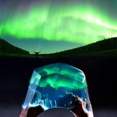 Secret Wood Aurora Borealis