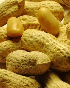 Los frutos secos como las nueces, avellanas, piñones entre otros son considerados alimentos altamente energéticos y su grasa es saludable.
