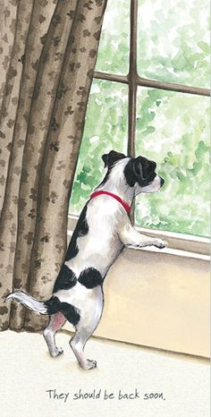 A lovely birthday card idea for dog lovers! Smiffy the Jack Russell X by animal artist Anna Danielle @thelittledoglaughed. Original watercolour artwork and greeting card designs with gently humorous captions featuring dogs and cats. Jack Russell Dogs, Jack Russell Terrier, Round Robin, Dog Illustration, Illustrations, Fox Terrier, Terriers, Vintage Dog, Dog Paintings