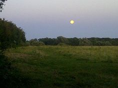Biggest moon of the year rising over Grantchester meadows. Seen from the wonderful Blue Ball pub. Named after a balloon that took flight nearby. Very old.