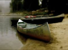Canoedling At Montecito Lake Art Print Lake Art, Artists Like, Art For Sale, Find Art, Saatchi Art, Art Prints, Boats, Photography, Art Impressions