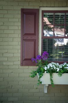 Clean Your Windows and Make Them Sparkle