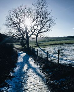 Winter walks and frosty faces