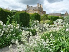 Conservatory Garden: Gardens to visit: Bourton House, Cotswold, England