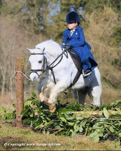 Child jumping side saddle, well done. Pony Saddle, Pony Horse, Horse Girl, Side Saddle, Cute Horses, Pretty Horses, Horse Love, Horse Photos, Horse Pictures