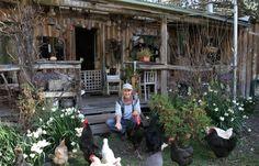 Rencontrez Jill Redwood. Depuis plus de 30 ans, elle vithors réseau dans une maison qu'elle a construit elle-même, fabriquée entièrement à partir de matériaux réutilisés et recyclés, avec des murs fabriqués à partir de chutes de bois et debouse de vache. Mme Redwood, une écrivaine et militante écologiste, déteste les supermarchés et ne mange que …