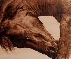 Pyrography by Julie Bender