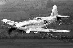 Royal Navy Blackburn Firebrand DD815