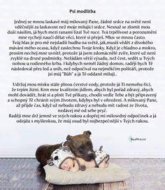 Psy, Dogs, Animals, Animales, Animaux, Pet Dogs, Doggies, Animal, Animais