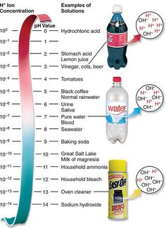 Visualization Example - The pH Scale