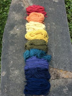 Natural dyes from our workshop with Wren House Yarns