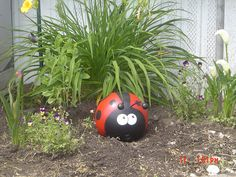 Making this right now for my momma's Christmas gift ! Bowling Ball Lady Bug.