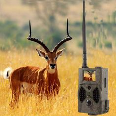 Deer Trail Cameras Infrared Photo Traps Camera with black IR wildlife cameras 12MP wild trail camera infrared photo-traps HC300M