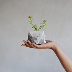 FACTO FORMA PETIT | planteur de succulente béton - effet marbre. Idéal pour bureau, sur un rebord de fenêtre ou comme une pièce maîtresse. Etant lune