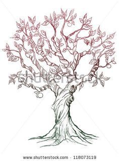 New Apple Tree Branch Tattoo Ideas Tree Tattoo Designs, Tree Designs, Tattoo Ideas, Apple Tree Drawing, Tree Branch Tattoo, Tree Tattoos, Fox Tattoos, Deer Tattoo, Raven Tattoo