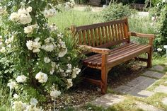 Wooden Benches Complimenting Garden Design and Backyard Landscaping
