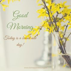Good Morning. Today is a brand new day!