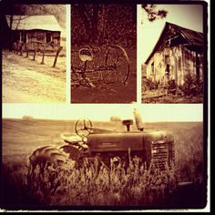 Rustic country, abandoned!