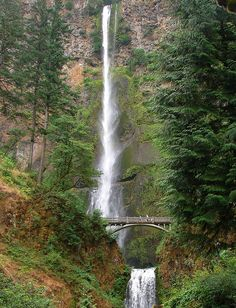 klamath falls jewish girl personals Pretty pictures nice photos aurora borealis northern lights amazing nature free personals clutter the golden  falls, oregon definitely  be gigantic the wonder.