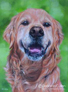 Dohko - Golden Retriever Dog Portrait Painting - paintmypet by Deborah Cullen Old Golden Retriever, Dog Portraits, A 17, My Animal, Sketches, Adventure, Pets, Canvas, Box