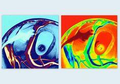 De Essentie, kleurduo - Yvon Feenstra Bewerkte foto van glazen elementen diverse afmetingen mogelijk kijk op www.glassbyyvon.com