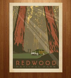Redwood National Park Art Print | Art Prints | Anderson Design Group | Scoutmob Shoppe | Product Detail