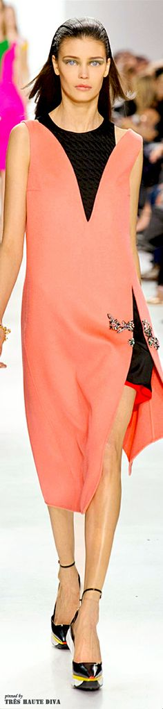 Paris Fashion Week Christian Dior Fall 2014 | The House of Beccaria#