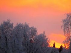 Suomi Finland matkablogi: Winter Wonderland part 2: southern northern Lapland, Finland