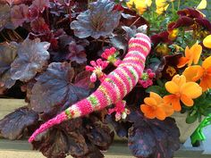 http://www.ravelry.com/projects/kathinka14/grab-a-gecko